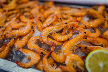 Picture of fresh shrimps seafood on ice in buffet line at luxury restaurant Zdjęcie Seryjne