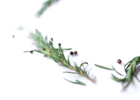 pepperand rosemary for cooking isolated on white background Foto de archivo