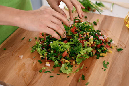 Close up of womans hands cooking in the kitchen. Housewife slicing fresh salad. Vegetarian and healthily cooking concept Stock Photo