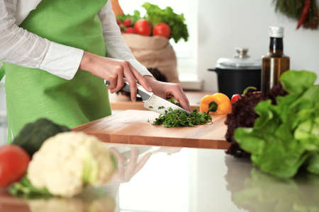 Unknown human hands cooking in kitchen. Woman is busy with vegetable salad. Healthy meal, and vegetarian food concept