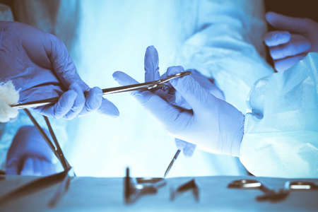 Surgeons hands holding surgical scissors and passing surgical equipment, close-up. Health care and veterinary concept Banco de Imagens