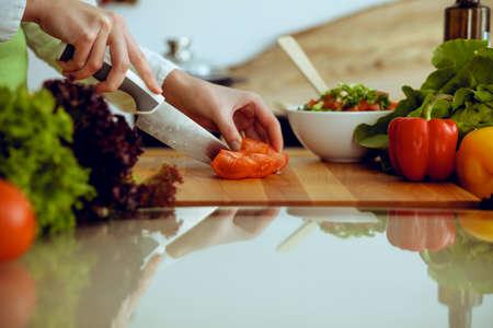 Manos humanas desconocidas cocinando en la cocina. Mujer cortando tomates rojos. Comida sana y concepto de comida vegetariana. Foto de archivo
