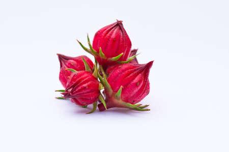 Roselle fruits on white background Stock Photo