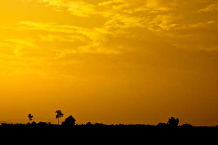 Beautiful sunset on the field, Thailand Stock Photo - 15704956