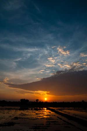 Beautiful sunset on the field, Thailand Stock Photo - 15962239
