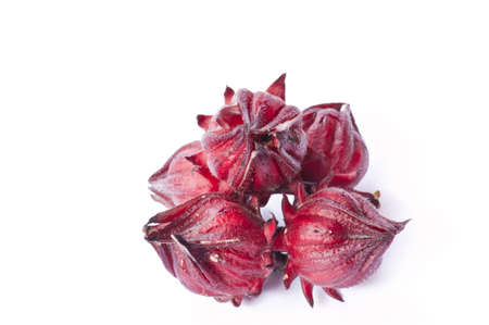 roselle fruits on white background  photo