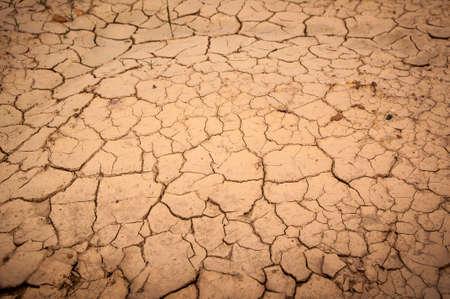nieużytki: Barren ground  Zdjęcie Seryjne