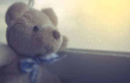 Soft focus bear vintage retro effect