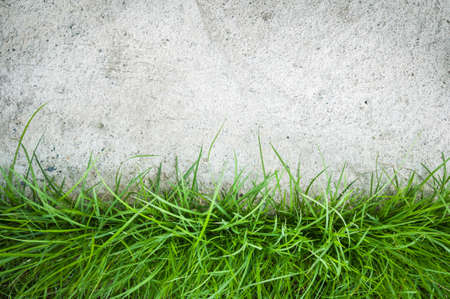 Abstract background with artificial grass on cement floor Stock Photo
