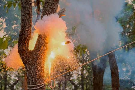 detonation: Fireballs explode tree