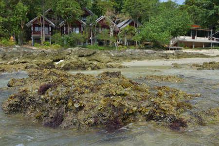 koh samet: The rocks on the beach in Koh Samet . Stock Photo