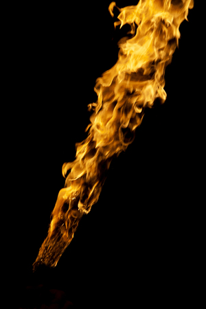 Fire, flames on a black background. Fire for advertising. Fire a fire.