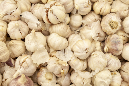 Garlic is lined in the shop window. Imagens