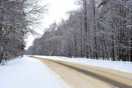 A deserted winter road in the forest.