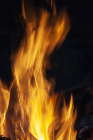 Fire, flames on a black background. Fire for advertising. Stock Photo