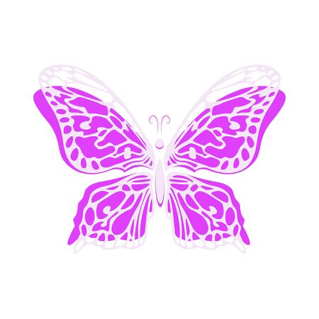 butterfly isolated: Vector butterfly drawn hand isolated on white background. Background with butterfly vector. Decorative stylized butterfly. Vector illustration.