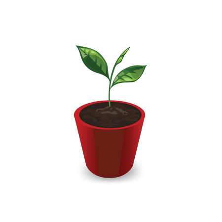 Icon plants in the pot isolated on white background. Icon young sprout with leaves in a red pot. Seedling in a pot in a cartoon style. Vector illustration. Vettoriali