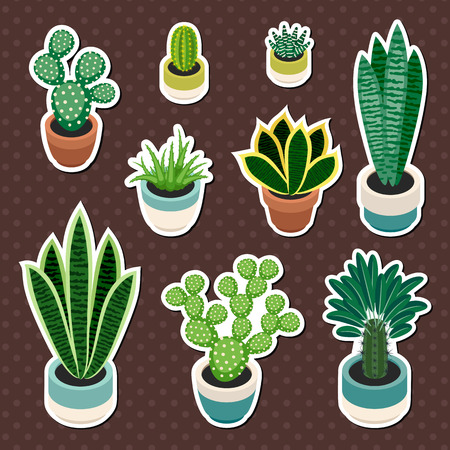 indoor plants: Set of cactuses and succulents in pots. Cactuses and succulents isolated on a brown background. Indoor plants in a flat style. Set of stickers indoor plants in pots. Vector illustration.