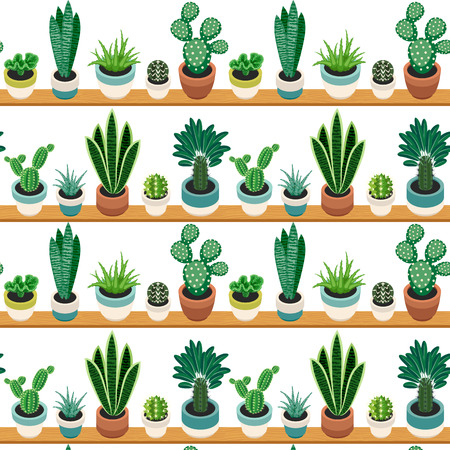 Seamless pattern of cactuses and succulents in pots on a shelfs. Indoor plants on the shelves isolated on white background. Natural background of indoor plants in a flat style. Vector illustration.
