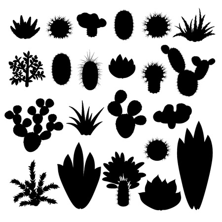 indoor: Silhouettes of cacti and succulents. Silhouettes indoor plants isolated on white background. Big set of silhouettes of indoor plants. Vector illustration.