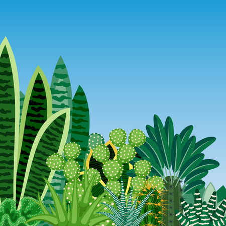 indoor plants: Cactus and succulents. Natural background of indoor plants isolated on blue background. Vector illustration. Illustration