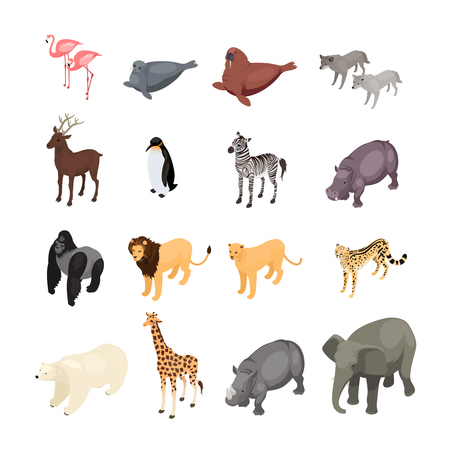 climatic: Isometric wild animals isolated on white background. Set of wild animals from various climatic zones. Vector illustration. Illustration