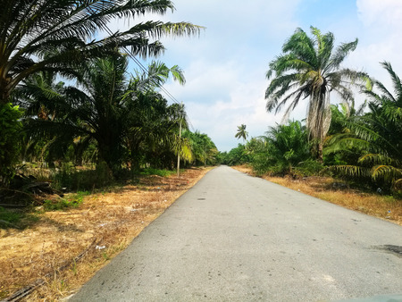 Empty road in countryside.