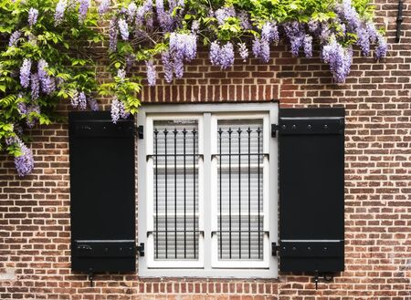 metal grid: Window with black wooden shutters and metal grid on brick wall, framed with beautiful plant