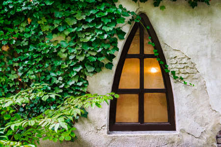 peculiar: Peculiar triangle window on an old grunge stucco wall. The left side of the wall is covered with green ivy plant. Stock Photo