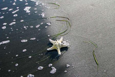 atar: star of the Black Sea