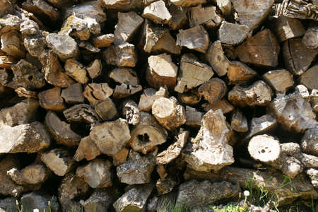 woodpile: woodpile texture Stock Photo
