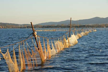 fishing nets: fishing nets