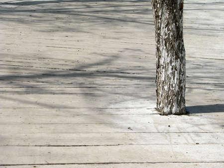 soltería: el podium blanco 1 Foto de archivo