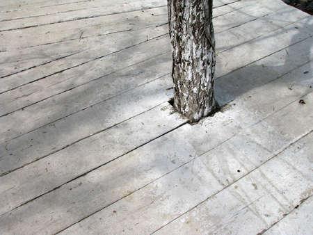 sameness: white podium 2