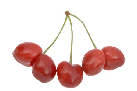 Uncommon cherries on white.  photo