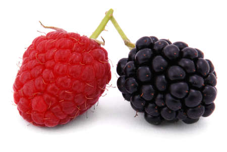 Raspberries and blackberries on white background Stock Photo