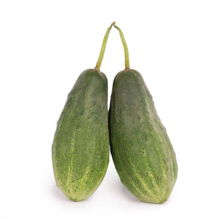 small plant: Two cucumber propping up each other isolated on white