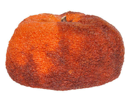 Rotten orange on white background