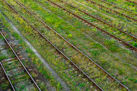 overgrown: Railway tracks at the station, the overgrown summer grass