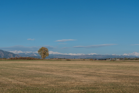 Fall at the Rokies - first early snow in mid October, Louisville, Colorado Stock Photo