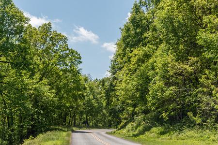 Beautiful Blue Ridge Parkway forest vista in springtime, western North Carolina