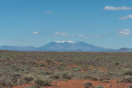 Beautiful Humphrey's Peak vista in springtime, with the northern Arizona high desert in bloom