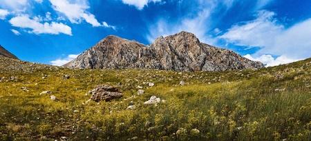 prato montagna: Mountain Meadow
