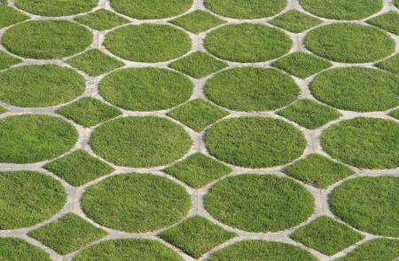 going green: Going green and clean environment, a beautiful pattern of green grass