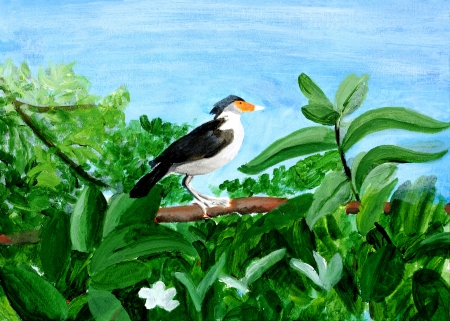 Original painting of a beautiful Myna on a tree, a child art photo