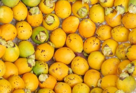 betelnut: Closeup of Ripe areca nut