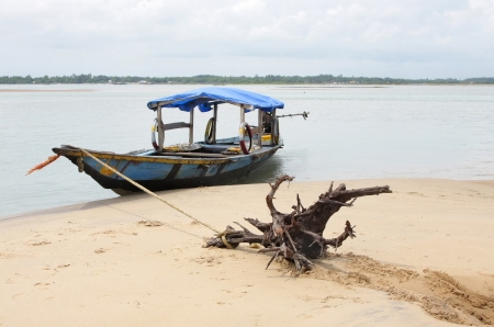 chilika: A wooden root used as substitute of anchor