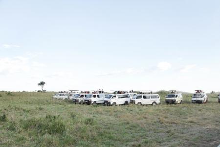 safari game drive: Masai Mara, Kenya-19 ottobre Safari game drive su safari furgoni con tetto aperto nel Masai Mara National Park Riserva Nazionale il 19 ottobre 2013, Masai Mara, Kenya, Africa