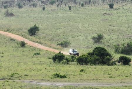 safari game drive: MASAI MARA, 19 Keyna-OTTOBRE: game drive Safari su safari furgoni con tetto aperto in Riserva Nazionale di Masai Mara (Parco Nazionale) il 19 Ottobre 2013 nel Masai Mara, Kenya, Africa