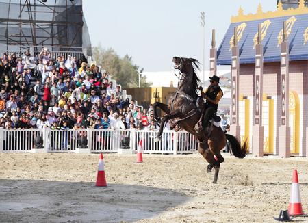 ee: SAKHIR, BAHRAIN - MARCH 22  Muharraq horse riding school performs Cowboy show on March 22, 2014 in Bahrain International Endurance Village during the Bahrain Animal Production Show  Mara ee  2014